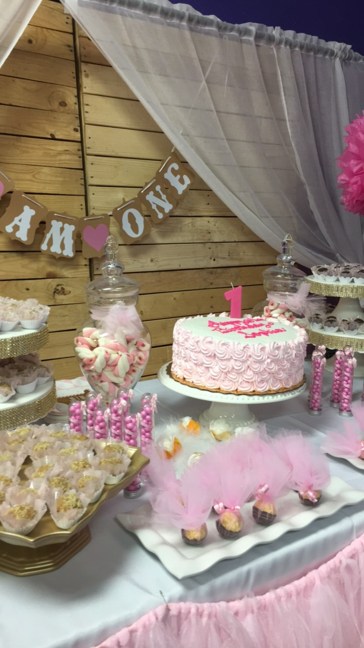 hosted toddler birthday tampa